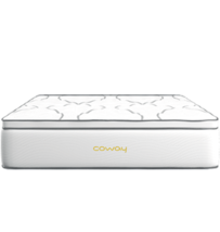 Coway Mattress King Balik Pulau