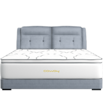 Coway Mattress Port Klang